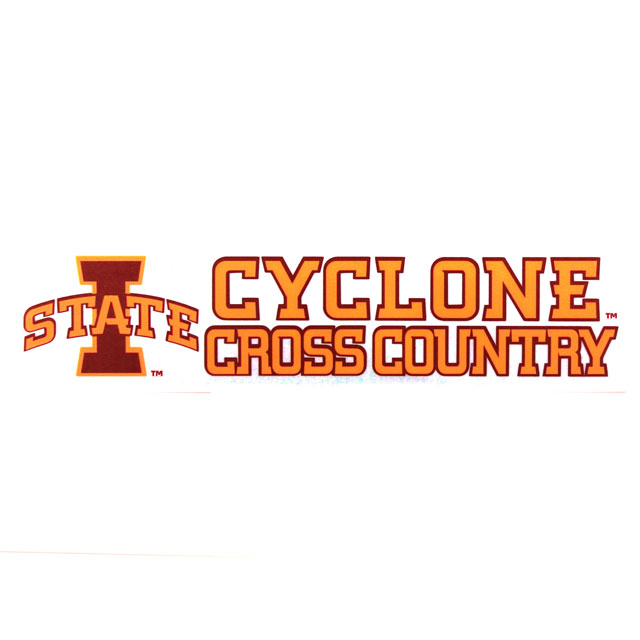 Image For Cyclone Cross Country Decal* <i>WAS $4.99</i>