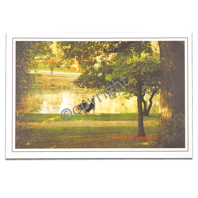 Image For Lovers Bench Postcard