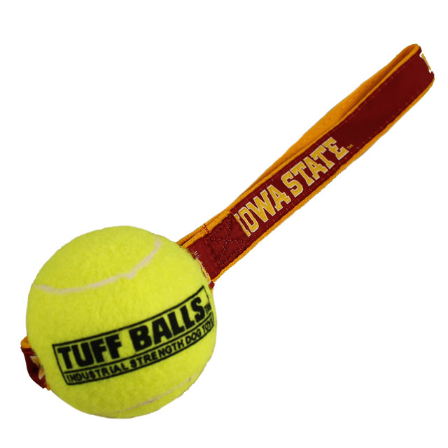 Cover Image For Iowa State Tuff Ball