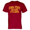 Cover Image for Cardinal Iowa State Sport T-Shirt (Wrestling)