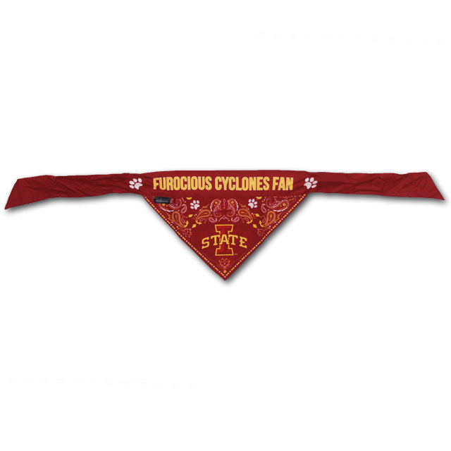 Image For I-State Pet Bandana (Small)