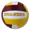 Cover Image for Baden® I-State Volleyball