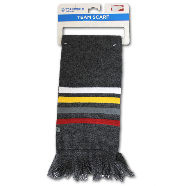 Image For Stripe Iowa State Scarf Top of the World