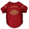 Image for I-State Stretch Pet Jersey - Big