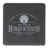 Cover Image for I-State College Of Human Sciences Decal