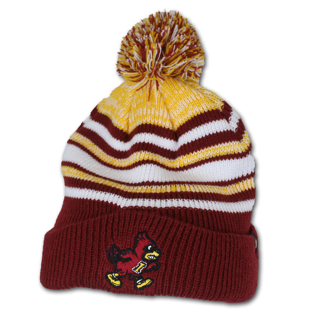 Cover Image For Youth Knit Pom Beanie