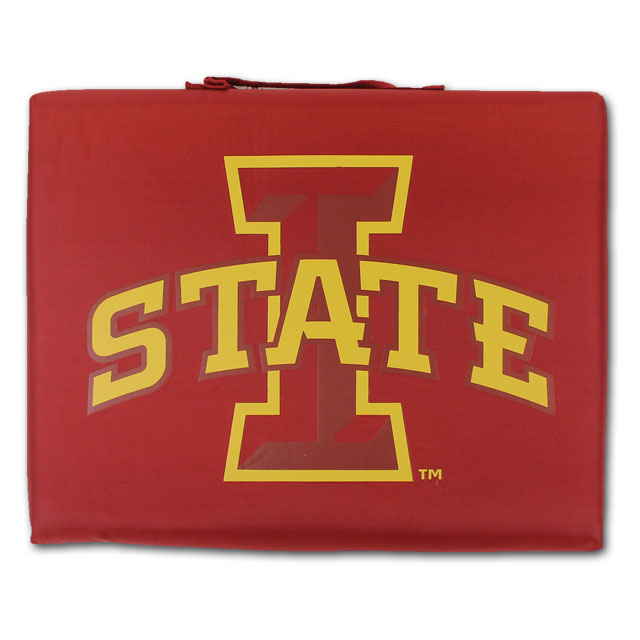 Image For Cardinal I-State Seat Cushion