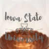 Cover Image for I-State Stemless Metallic Wine Glass