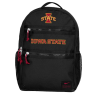 Cover Image for Iowa State Cyclones Nike Utility Heat Backpack