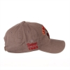 Cover Image for Zephyr® Grey Walking Cy Cap